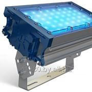 Прожектор TL-PROM 50 PR PLUS FL (Д) Blue фото