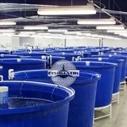 Рыбные фермы,установка замкнутого водоснабжения мини фото