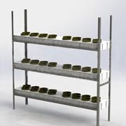 Система для выращивания Vertical Farm фото