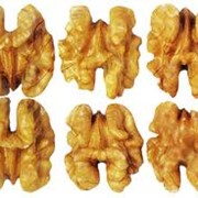 Грецкий орех - светлая половинка фото