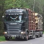 Аренда лесовоза+375(29) 665-49-72 фото