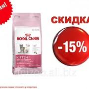 Сухой корм для котят (подходит для хорьков) Royal Canin Kitten 36 - 10 кг фото