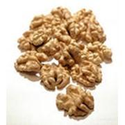 Закупка ядер грецких орехов фото