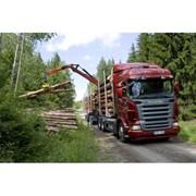 Услуги лесовоза SCANIA (длина до 6 м) с гидроманипулятором + прицеп (длина 8-9 м) фото