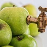 Линия изготовления яблочного сока прямого отжима фото
