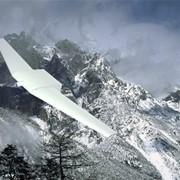 Беспилотный летательный аппарат (БЛА) S250 фото
