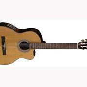 Классическая гитара Cort ACC-15F фото