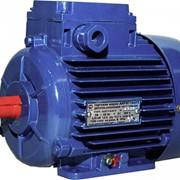 Электродвигатели взрывозащищенные АИМ 80А2 фото