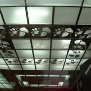 Монтаж потолочных систем Армстронг фото