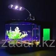 Настольный аквариум-органайзер с дисплеем фото