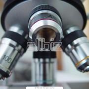 Проведение биохимических анализов фото