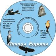 Выпуск компакт-дисков фото