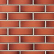 Облицовочный кирпич пустотелый Lode GEMINI красно-пестрый гладкий 250x60x65 фото