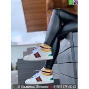 Кроссовки Gucci с полоской Web фото