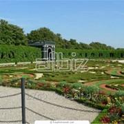 Водоем декоративный,садовый пруд Киев фото