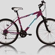 Велосипед Forward APACHE 102 фото