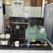 Строительство Промышленных холодильников, морозильников и овощи хранилище любой сложности фото