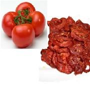 Оборудование для производства томатных чипсов. фото