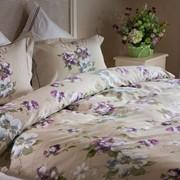 Комплекты постельного белья IRIS Еврокомплект (Сатин) фото