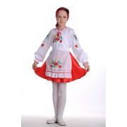 Вышиванка Костюм для девочки «Волошкове поле», фото