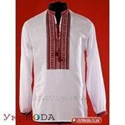 Мужская вышитая сорочка (chs-02-09) фото