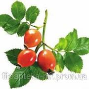 Плоды шиповника 110 г фото