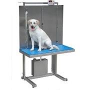 Оборудование ветеринарное фото