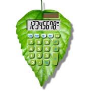 Калькулятор Зеленая Карта фото