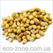 Кориандр Индийский 250г. Специя (food-grade) Индия. фото