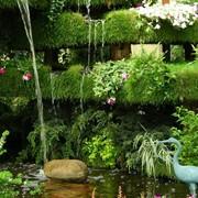 Ландшафтный дизайн. Подбор, высадка растений, комплексный уход за зелеными насаждениями. Создание газонов, уход за ними. Создание ручьев, водопадов, фонтанов, декоративных прудов. Установка и обслуживание поливочных систем и систем орошения. Фитодизайн. фото