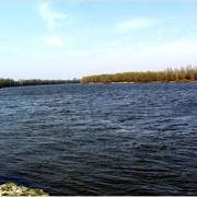 Земля под коттеджи на реке Десна фото