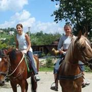 Прогулки на лошадях и гуцульских повозках фото