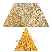 Крупа - гороховая, ячменная, пшеничная, ячневая ГОСТ фото