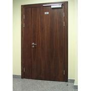 Деревянные глухие двери фото