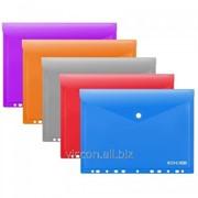Папка-конверт на кнопке с перфорацией, A4, economix, горизонтальная, ассорти E31325 фото