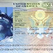 Поможем получить визу в США! фото