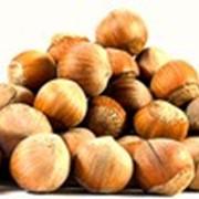 Орехи, арахис, кешью, миндаль, фисташки фото