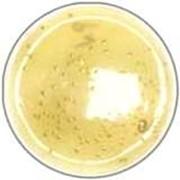 Питательный бульон для накопления сальмонелл по Раппапорту-Вассилиадису (RVS-бульон) фото