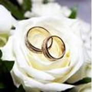 Оформление цветами, букет невесты, свадебное оформление, оформление зала, оформление свадеб, свадебный букет невесты, свадебные букеты. фото