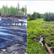 Рекультивация нарушенных земель фото