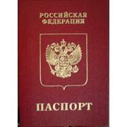 Заграничный паспорт нового поколения по срочному, за 11 дней фото