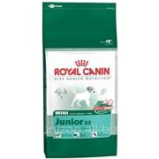 Сухой корм для щенков Royal Canin Mini Junior 33 - 8кг фото