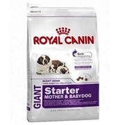Giant Starter M&B Royal Canin корм для щенков и сук, Пакет, 15,0кг фото