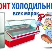 Ремонт холодильников на дому, частный мастер фото