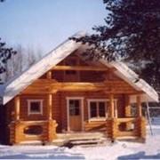 Срубы деревянных домов и бань. фото