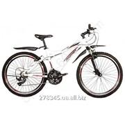 Велосипед Горный Premier Bandit 3.0 17 TI-12600 фото