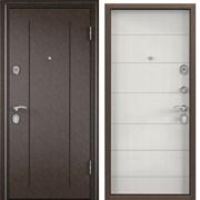Дверь входная металлическая Delta 100 фото