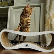 Лежанки для кошек фото