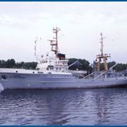 Рыболовные траулеры-сейнеры фото
