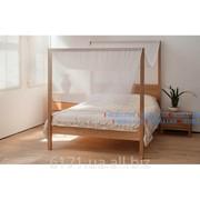 Кровать Оазис 2000*1600 фото